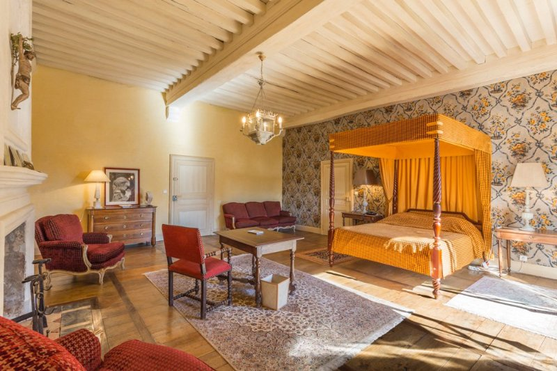La Ribeyrie Chateau Sleeps 20 with Pool - 5049645, holiday rental in Liorac-sur-Louyre
