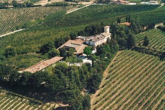 Fattoria Paradiso, vacation rental in Predappio