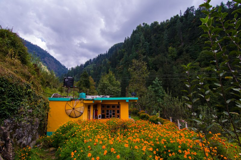 Lambhari Hills Homestay, casa vacanza a Jibhi
