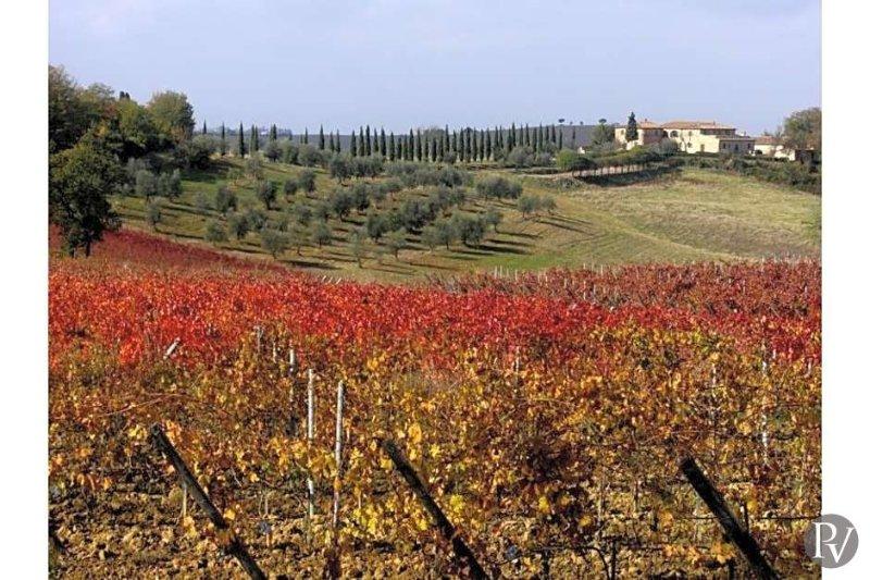 Siena Villa Sleeps 24 with Pool and Air Con - 5433052, location de vacances à Montisi