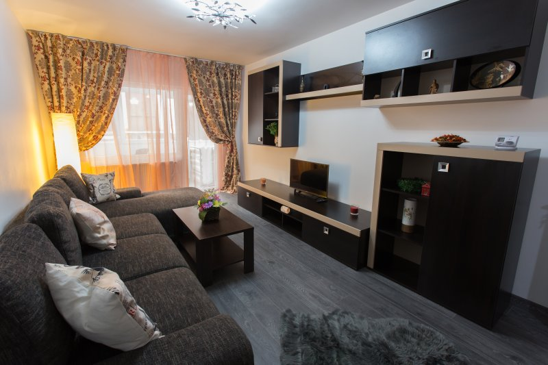 Apartament FEELMOUNT, vacation rental in Rucar