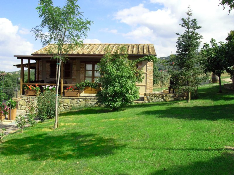 Country house: Capanna, holiday rental in Paciano