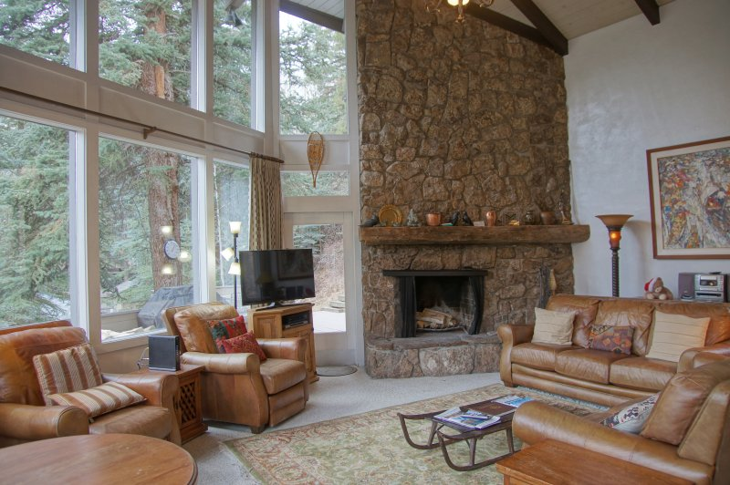 Vaulted Ceilings and floor to ceiling fireplace