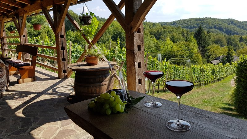 Vineyard Cottage Naja, holiday rental in Ratez