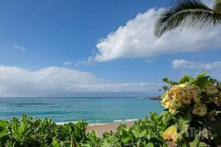Aloha and welcome to our Napili Shores condominium located in D building on the first floor!