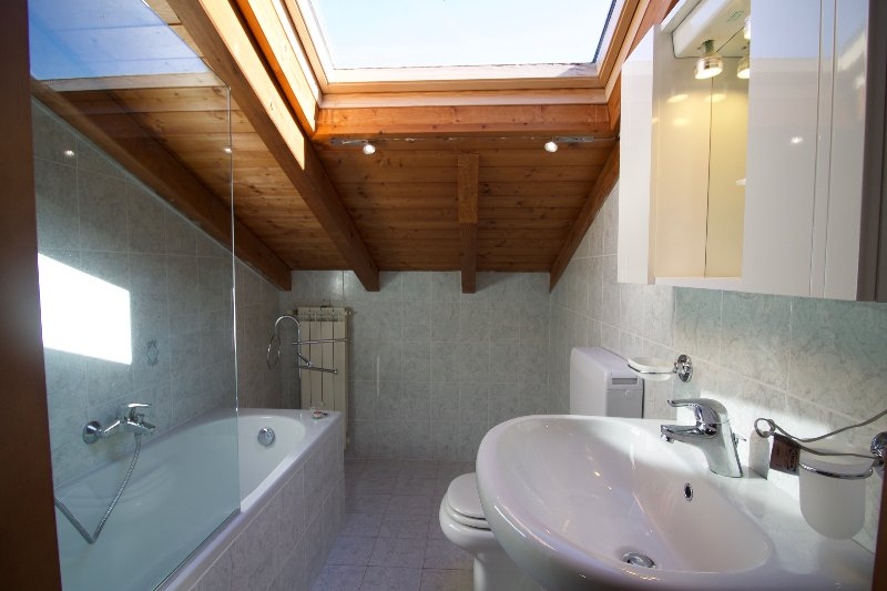 Bathroom with a tub and handheld shower