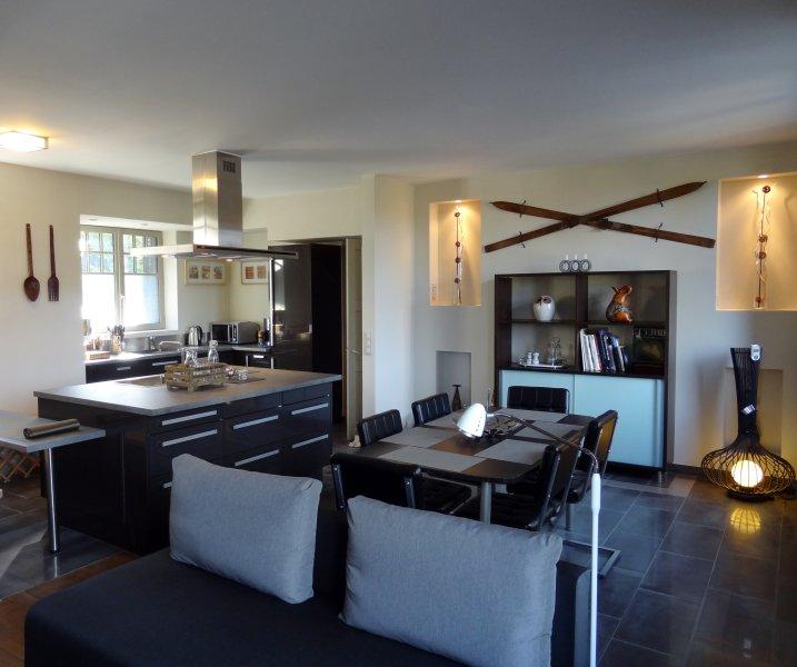 Maison en bord de Seine à 15 min de Fontainebleau, holiday rental in Nangis