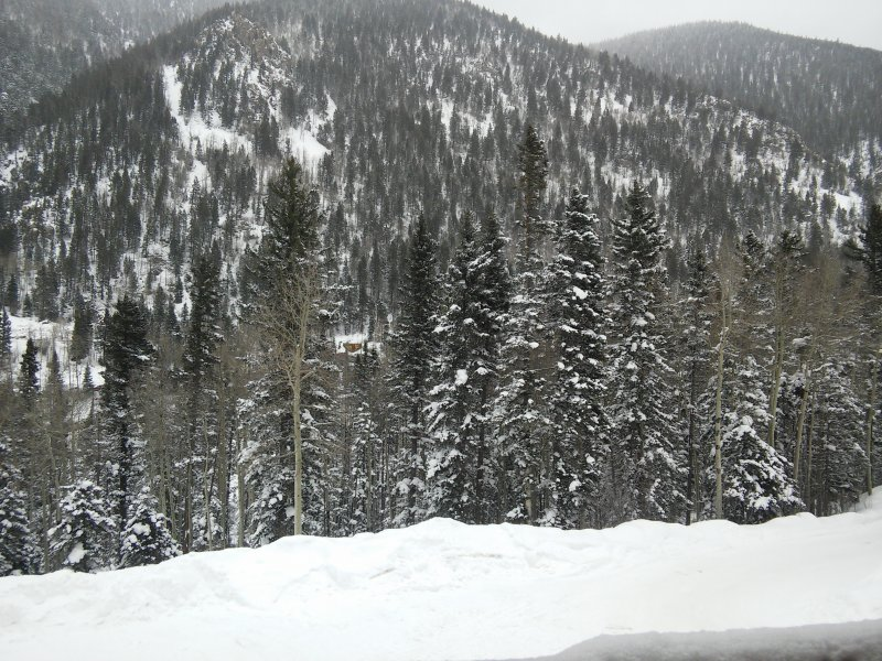 Taos Ski Valley Slopeside Mountain Retreat, 2 BR/1FB, Views, WIFI, Fireplace, alquiler de vacaciones en Taos Ski Valley