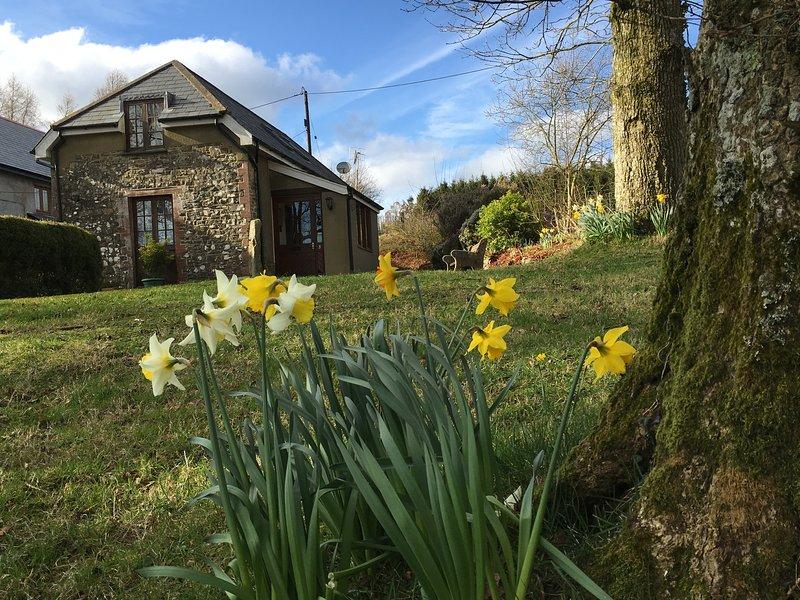 Meadow Cottage doux au printemps avec des fleurs de printemps tout autour.