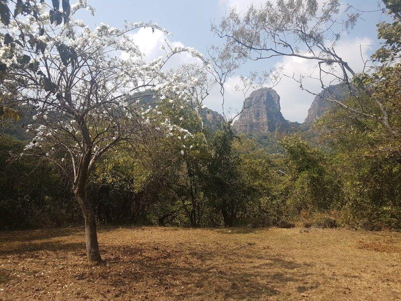 Anão vista para a montanha