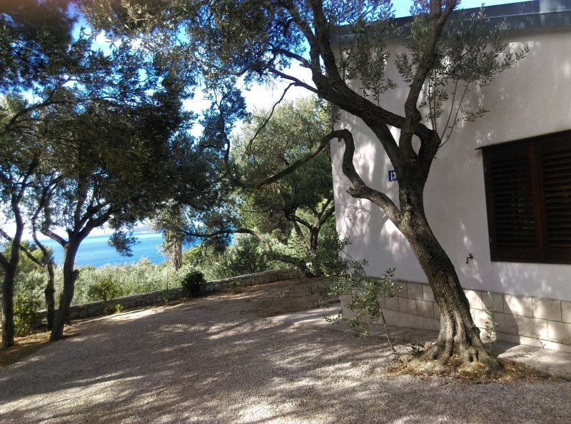 House Zlatko, location de vacances à Peljesac Peninsula