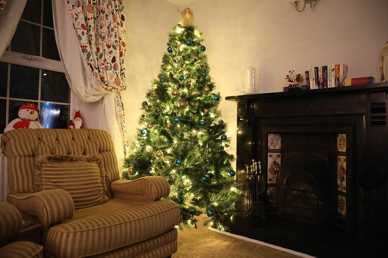 Front lounge at Christmas time