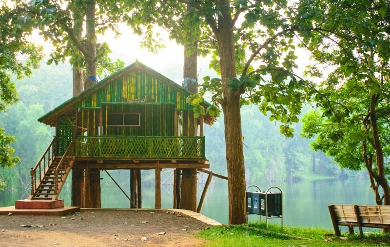 Jungle Stay, holiday rental in Coimbatore District
