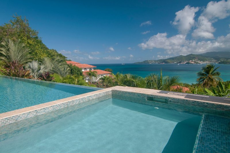 Large infinity pool and separate jacuzzi tub