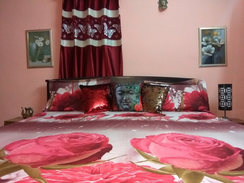 CHAMBA COTTAGE-ROOMS/SCOOTY/ROOMS RENTAL/ADVENTURES, holiday rental in Khaniyara