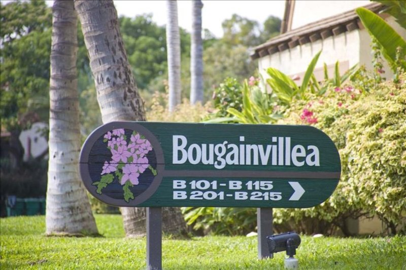 Your condo is located in the Bougainvillea Cluster