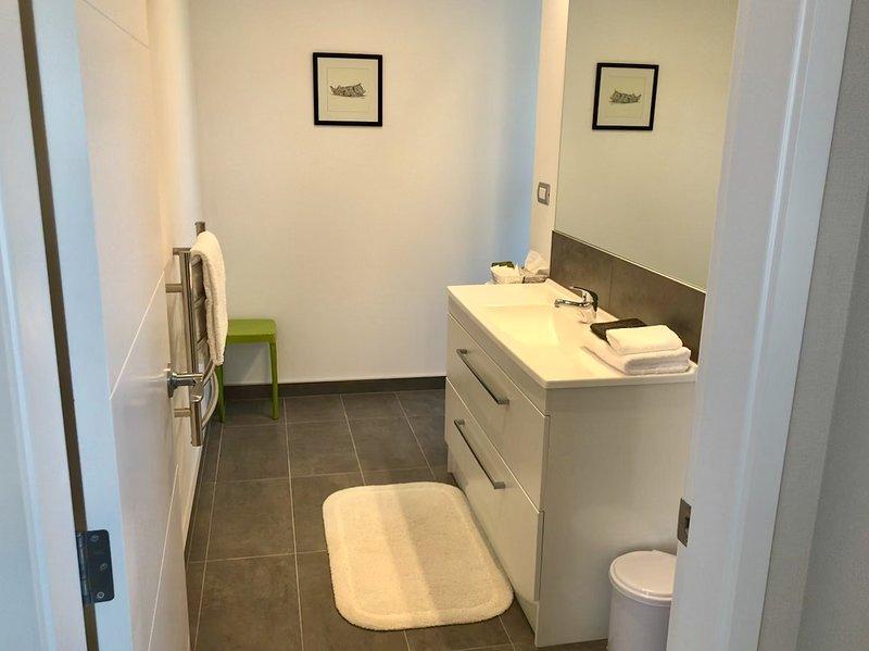 En-suite with walk-in shower and toilet behind vanity wall.