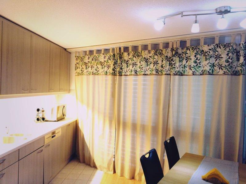 Villmergen Apartment, vacation rental in Endingen