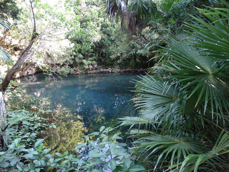 cenote in front of the house