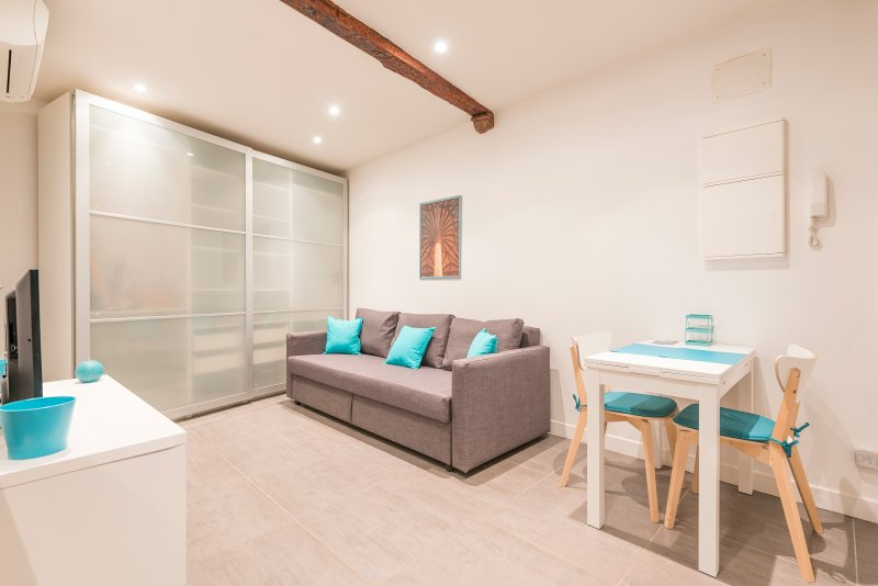 Appartement Hypercentre Toulouse, holiday rental in Toulouse