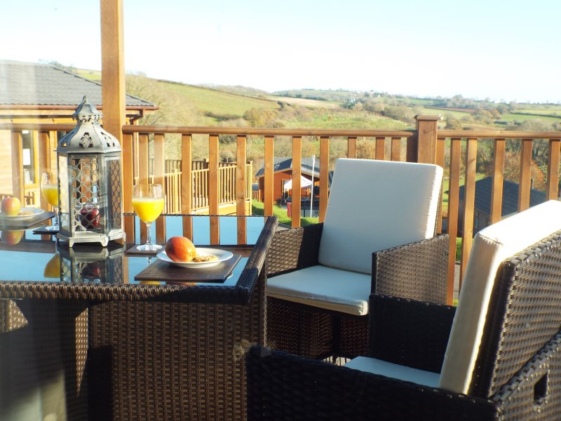 luxury 2 4 6 berth pet friendly holiday lodge c/w private Hot Tub Devon Hills, vacation rental in Paignton
