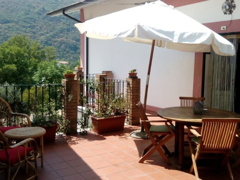Comfortable terrace next to the garden/olive grove of 2000 square meters.Spaces available to guests
