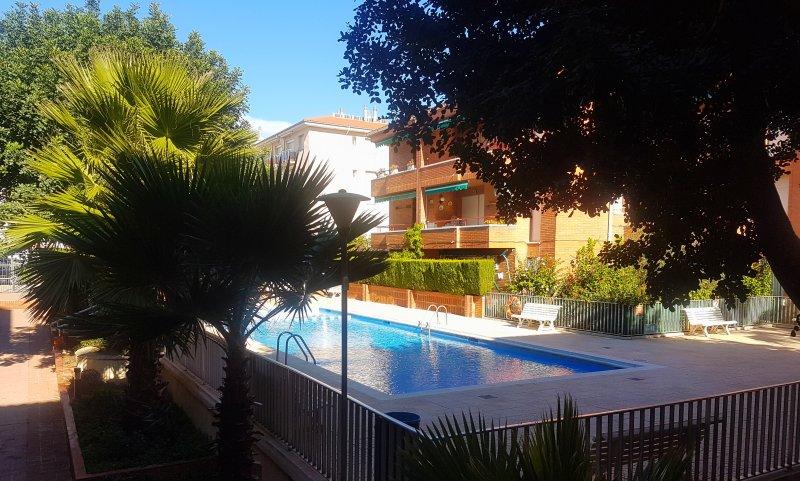piscine de la terrasse