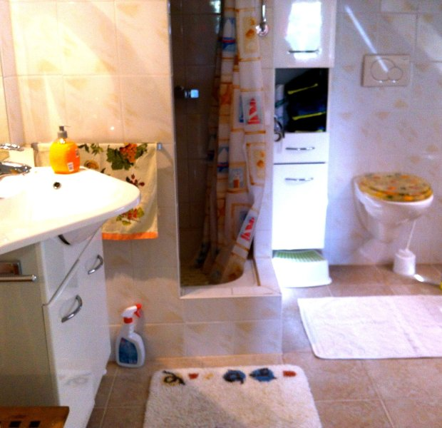 Bathroom with shower, lavabo and toilet in the apartmentapartment