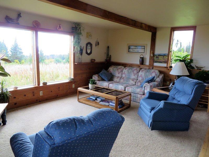 Gelukkig woonkamer. Couch zeer comfortabel als extra bed.