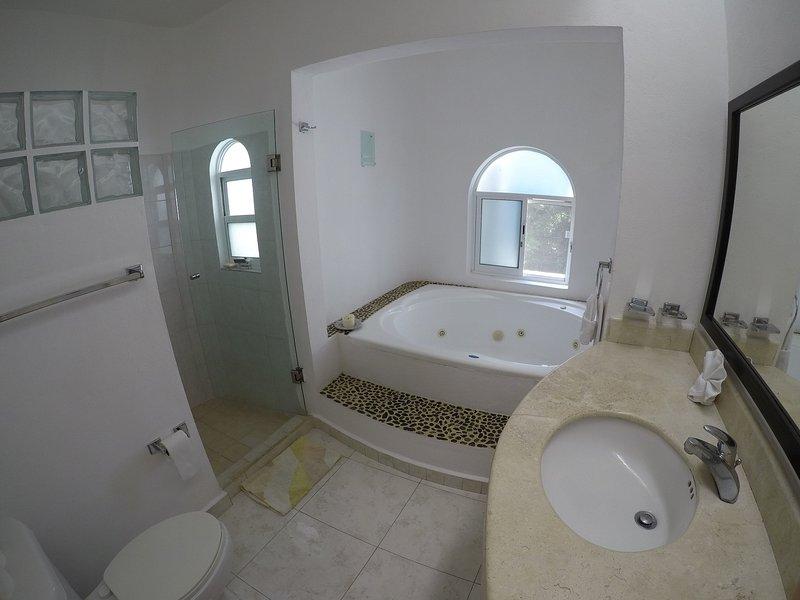 El dormitorio principal tiene baño con jacuzzi y ducha - también tiene walk in closet