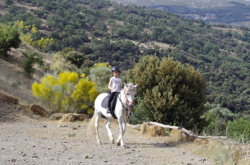 lecciones de montar a caballo se pueden organizar para sus vacaciones - fantásticas vistas mientras se aprende a montar !!!