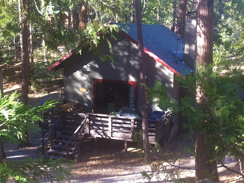 Cozy cabin in the woods - Close to the arts/music, alquiler de vacaciones en Idyllwild