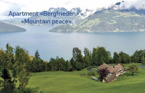 Apartment Ferienwohnung Bergfrieden Rigi view, holiday rental in Gersau