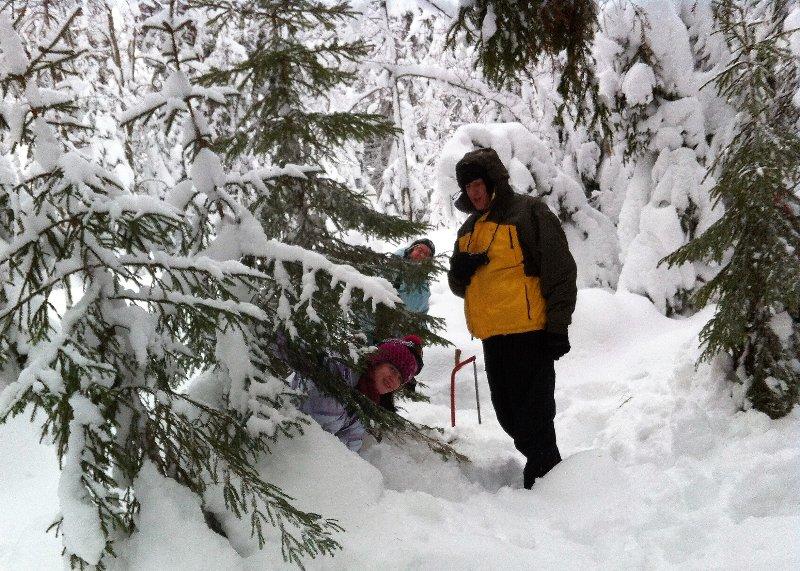K45 Mackenzie Cottage - Unsere Ferienhäuser sind für Weihnachten dekorieren Sie sogar Ihren eigenen Baum pflücken!