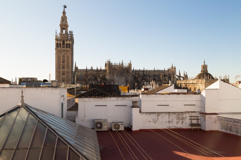 View of the Cathedral from the roof-terrace.