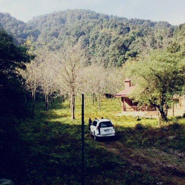 vue Orchard avec chalet propriétaires de la crête