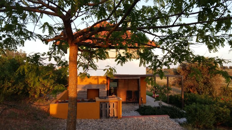 Casa a Oliveira, holiday rental in Ferreira do Alentejo
