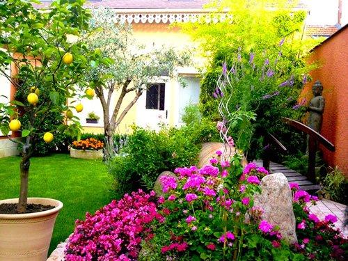 exteriores de ar / flores e árvores