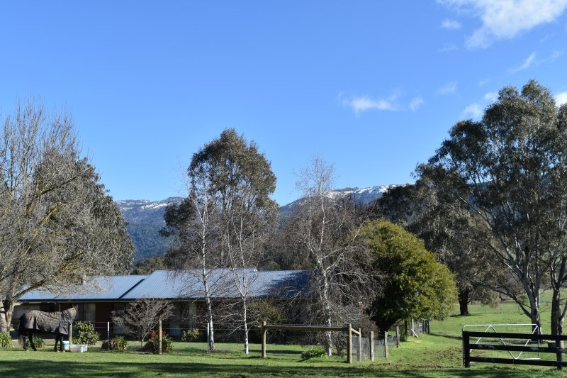 View of house and mount buffalo