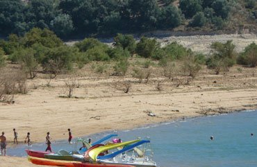 Pedallos på sjön stranden