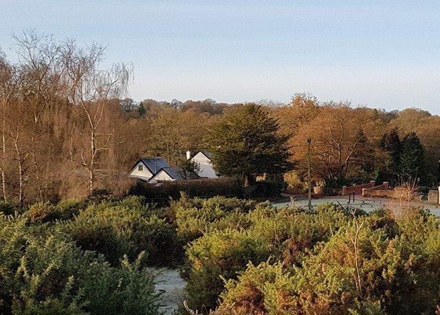 Het huisje gezien vanuit het bos tegenovergestelde.