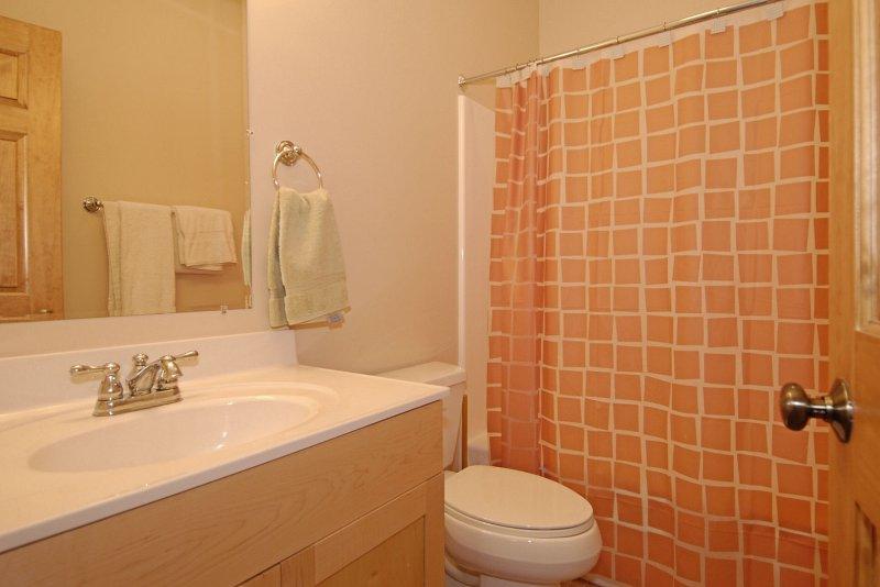 On-A-Whim-Winterset 44-Lower Bath