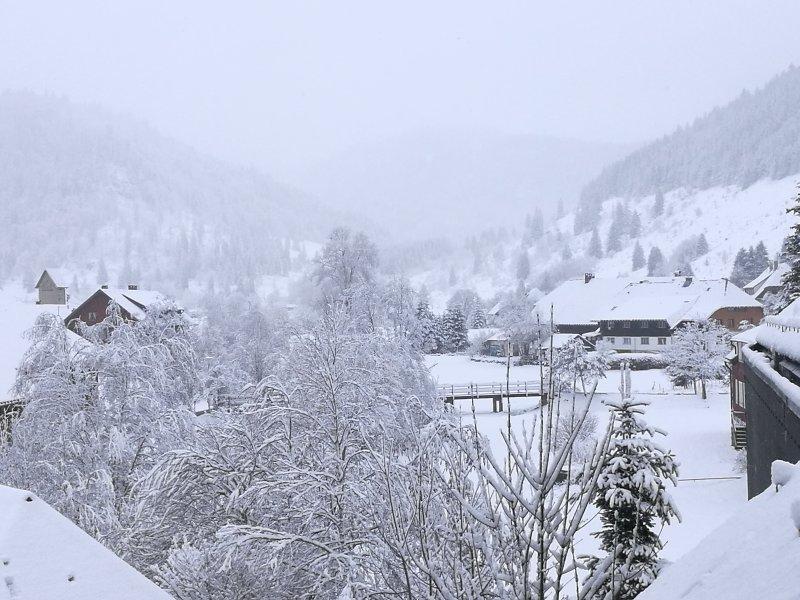 Studio A2 Albmatte Ferienhaus im Schwarzwald/Black Forest, holiday rental in Menzenschwand-Hinterdorf