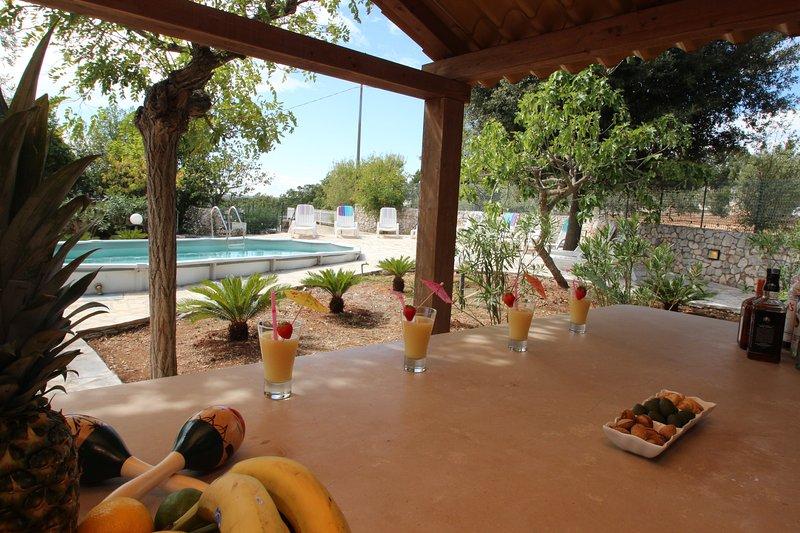 Ver a la piscina desde el bar de la piscina