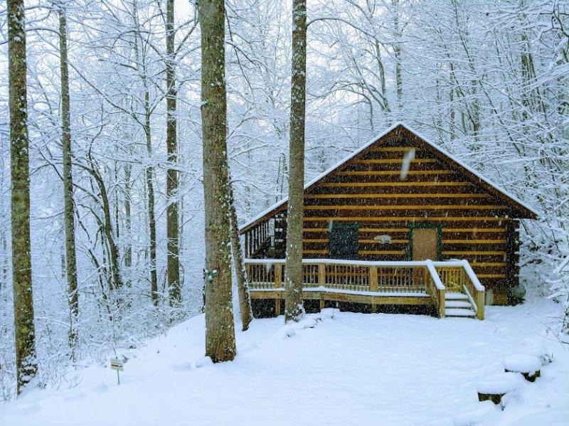 black dog overlook peaceful secluded mountain cabin in the rh tripadvisor com