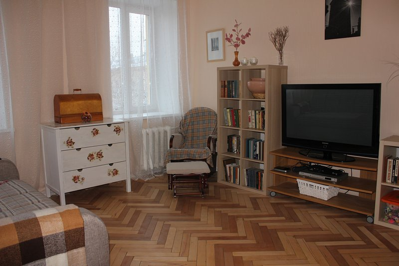 Cosy apartment in the center on Vasilyevsky, holiday rental in Peterhof