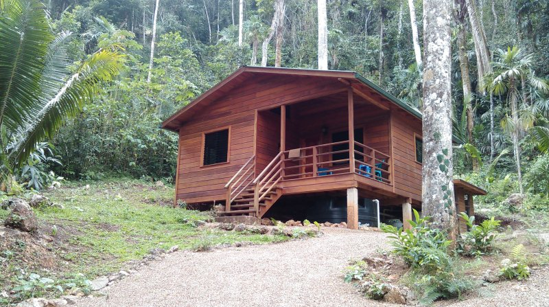 Rainforest Hideaway, holiday rental in Black Rock