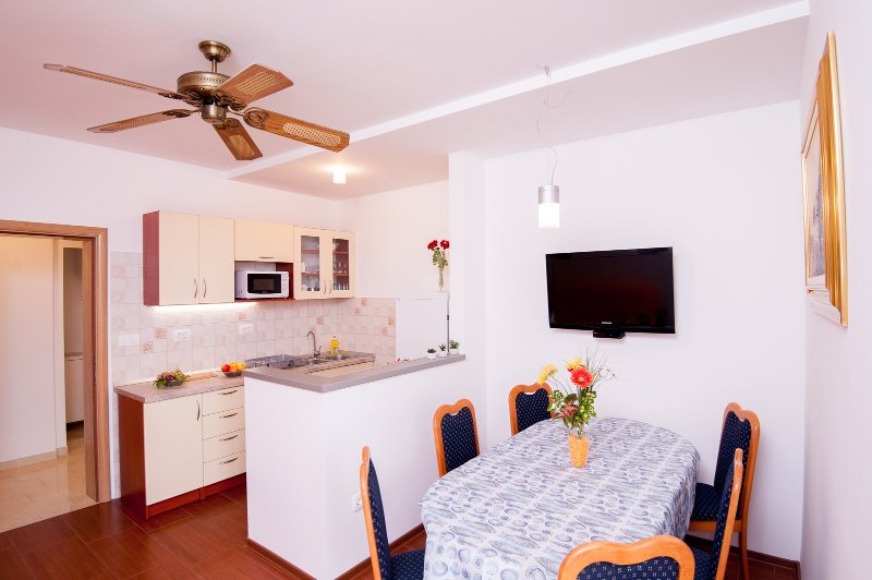 Large three bedroom apartment with terrace and sea view, holiday rental in Pisak