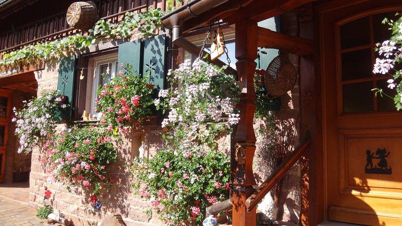 Très charmante maison de caractère sur la route des Vins en Alsace, holiday rental in Dahlenheim