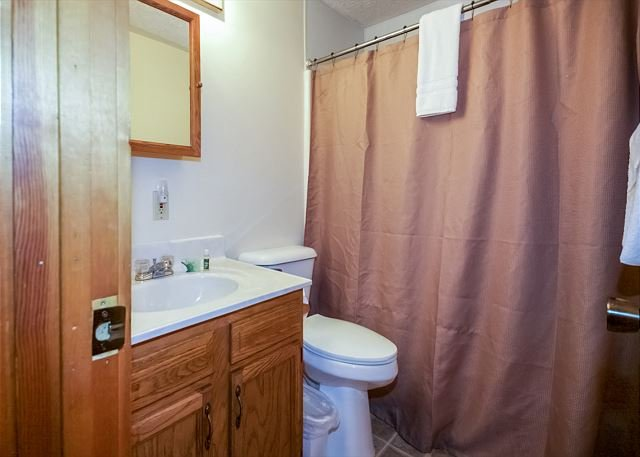 Alpine Cabin Bathroom 2